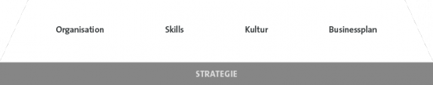 Growth Canvas - Strategie