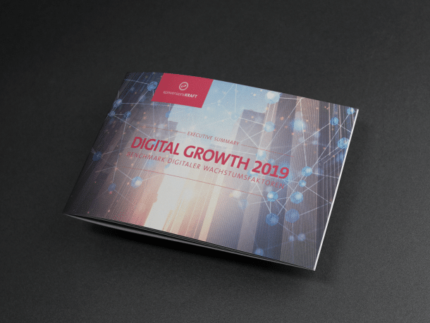 Executive Summary der Studie Digital Growth 2019